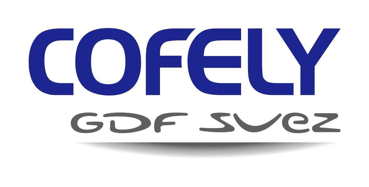 Fusione Cofathec Servizi ed Elyo Italia in Cofely servizi energetici e facility