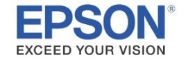 Stampanti Epson nastri fosforescenti