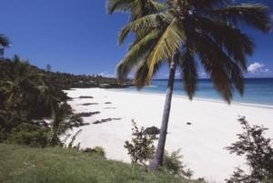 SPIAGGIA palma Comores