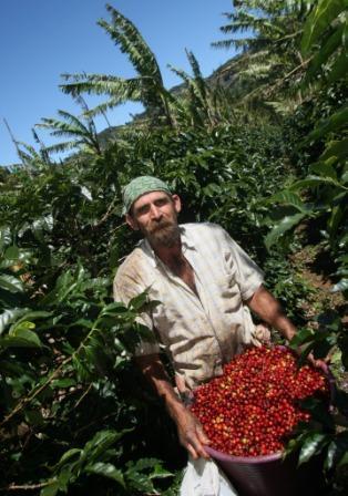 Ecolaboration: Nespresso caffè ecosostenibile in Italia