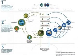 INTESA SANPAOLO_ellenmacarthurfoundation circular ecomomy