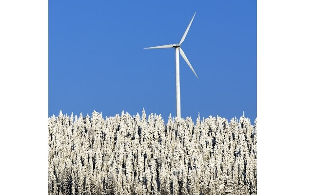 Google: più energia eolica dai paesi nordici