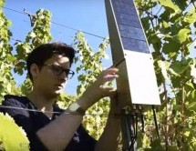 Connected Vineyards Ericsson show how IoT technology helps business