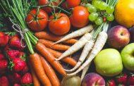 Evoluzione agro-alimentare