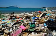 WWF impatti della plastica