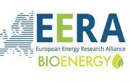 Bioenergy and decarbonisation