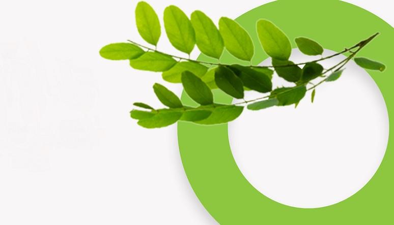 Follow Our Fibre: value chain