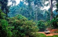 Emergenza ambientale rimane
