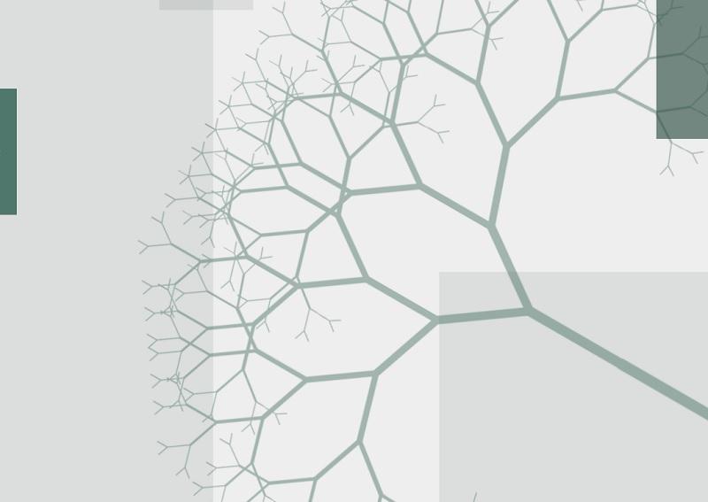 Organizzazioni a rete