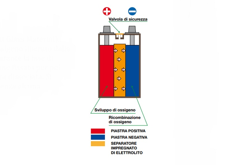 FIAMM leader batterie ausiliarie AGM