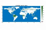 Mappa biomasse dallo spazio