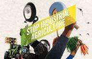 Disastro agricoltura europea
