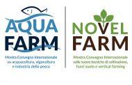 AquaFarm e NovelFarm nel 2021