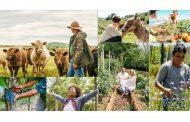 Airbnb Rural Bootcamp