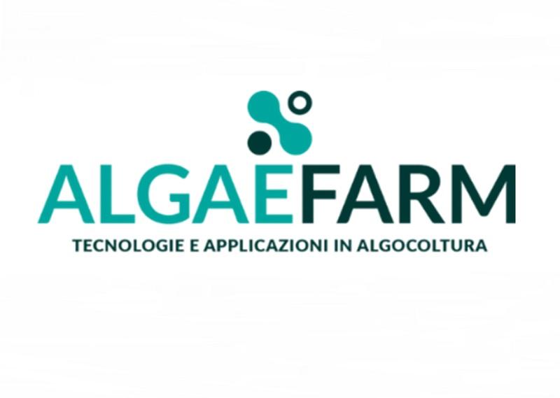 Coltivazione microalghe: mercato
