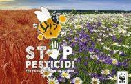 Stop pesticidi: salviamo api