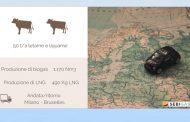 Allevamenti bovini e bioenergie