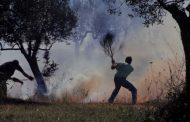Rilevazione incendi boschivi
